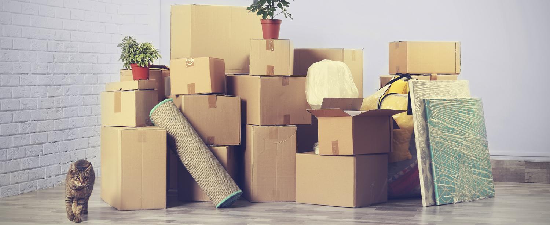 Подготовительные работы перед квартирным переездом
